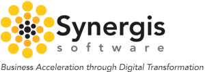 What We Do � Synergis Software